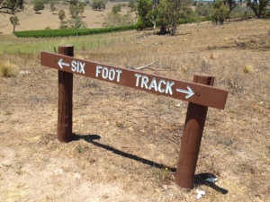 Six Foot Track Sign